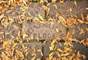 10102012_ENT_FallPhotos_DJB_1130_display
